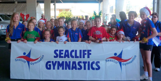 seacliff-recreation-centre-seacliff-gymnastics-group-banner
