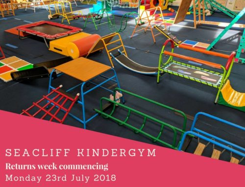 KinderGym – Term 3 Starting Soon